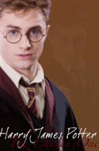 harry_potter_the_chosen_one_by_soldierseven-d4gl0a4.jpg